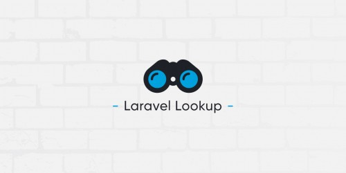 Lancement du paquet PHP Laravel Lookup