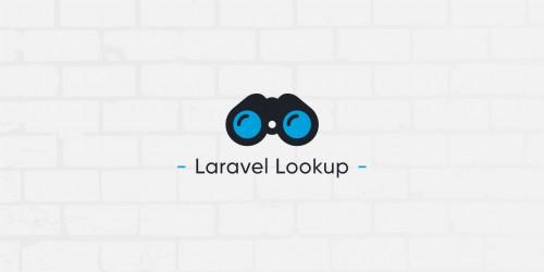Lancement du paquet PHP Laravel Lookup